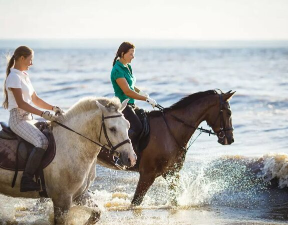 Explore Daufuskie Island, Daufuskie Island Vacation Rental Group