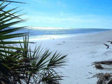Beach Bungalow, Daufuskie Island Vacation Rental Group